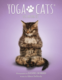​Yoga Cats Deck & Book Set. Йога Кошек.
